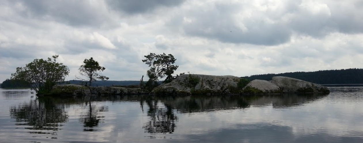 Bellens Fiskevårdsområdesförening